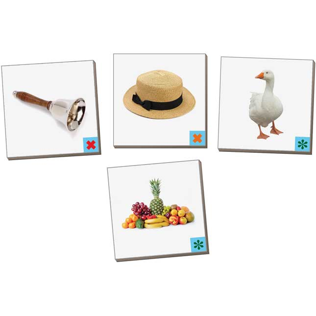Really Good MAGtivity Tins™ Vowel Sounds Picture Sorting Kit