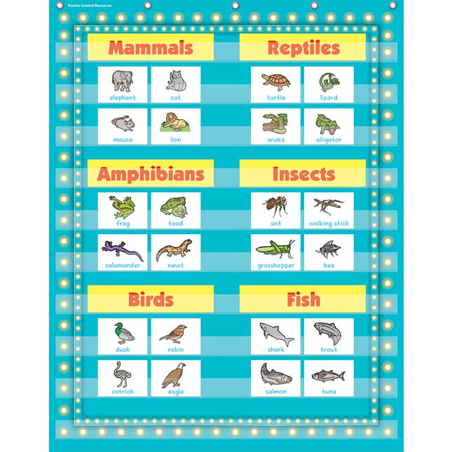Marquee 10-Pocket Chart - Light Blue