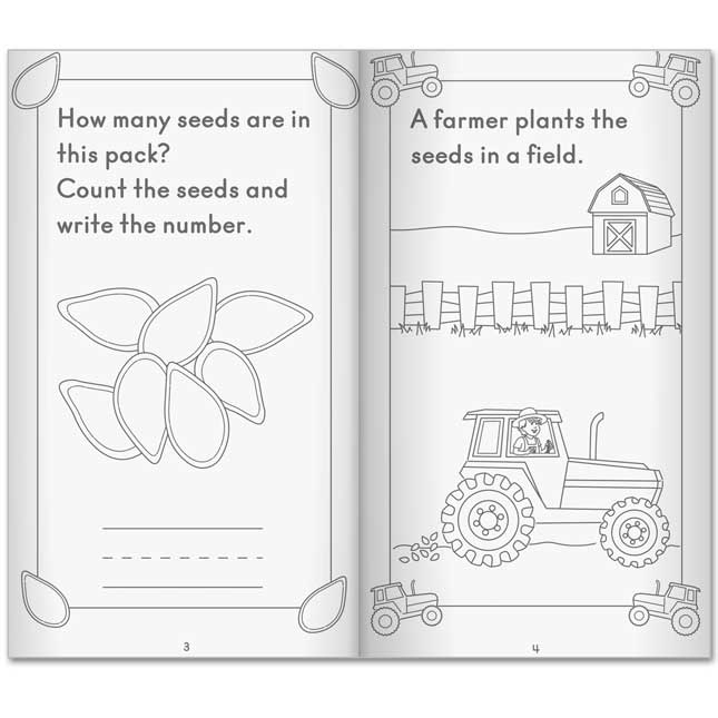 Life Cycle Of A Pumpkin Activity Books